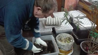 Domowa wytwórnia kompostu działa!