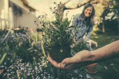 Zapraszamy na warsztaty ekologiczne, obejmujące tematykę bioróżnorodności, ochrony upraw, roślin miododajnych