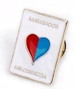 ambasador miłosierdzia